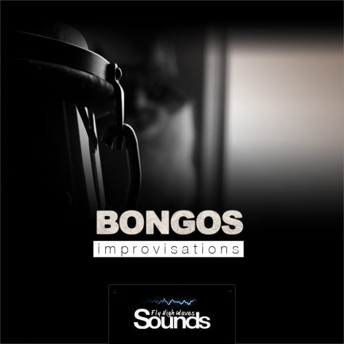 Bongos Improvisations | Sound Samples Library